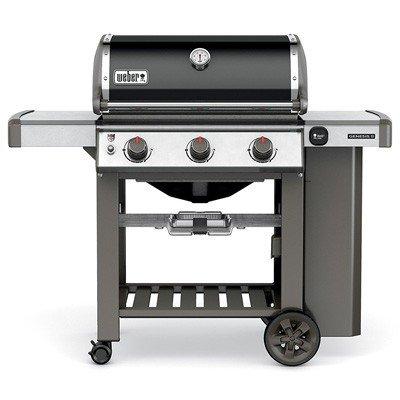 Weber Genesis II E-310