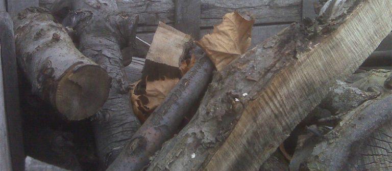 best wood for smoking chicken